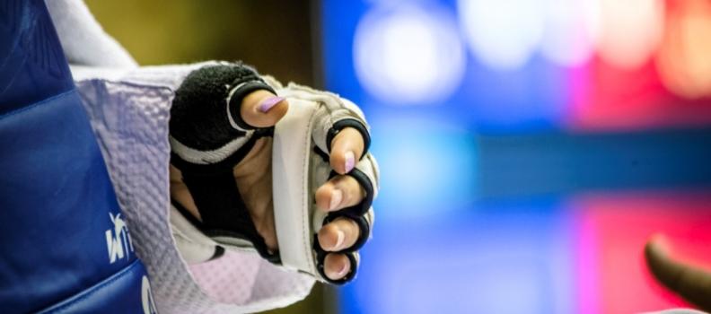 New Martial Arts Partnership Announced Between Karate and Taekwondo